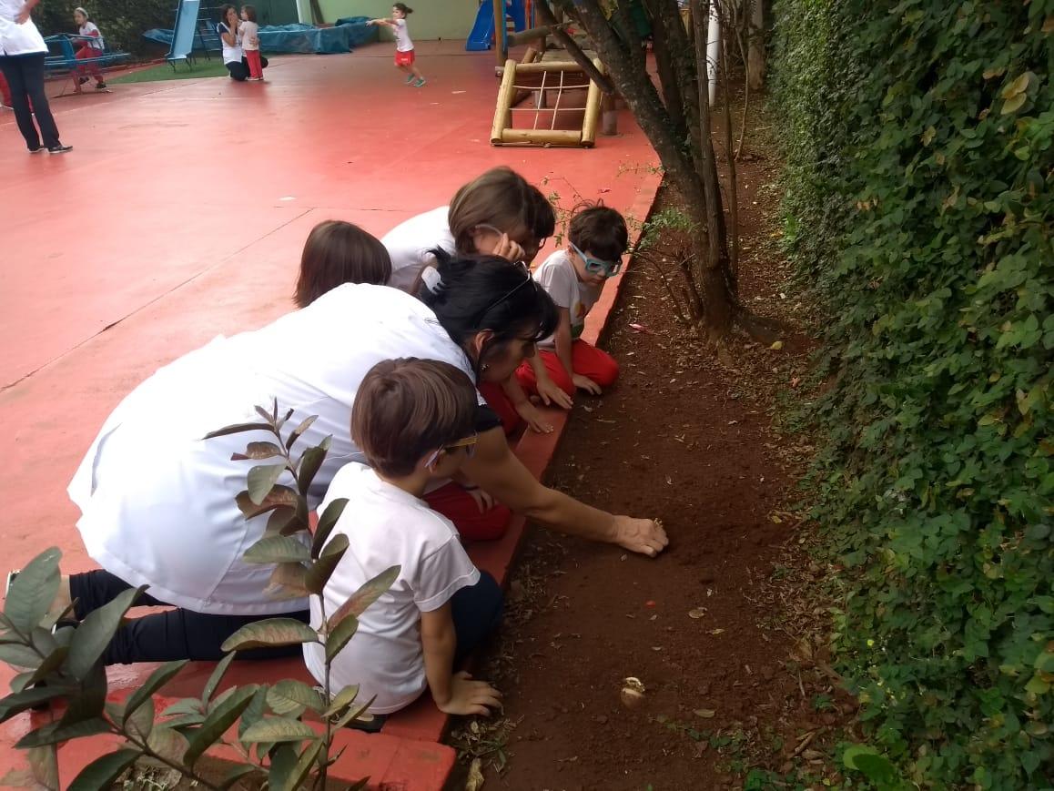 O Infantil III fez um tour pela escola observando os detalhes do meio ambiente: aprendizagem por meio de experiências 🌳
