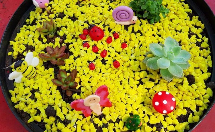 Meu jardim tem muitas flores!